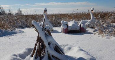 Seebad Loddin erleben und entdecken, Winterlandschaft, Loddin, Schnee, Winter, Natur, Lagerfeuer, Schwäne